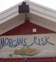 Morgans Fisk