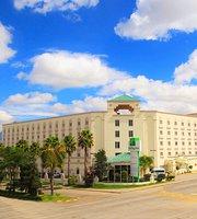 Holiday Inn Leon - Convention Center