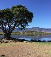 Ngorongoro دهانه منطقه حفاظت