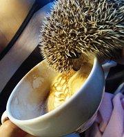 Kawiarnia Bieńkula