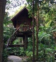 Art's Riverview Jungle Lodge
