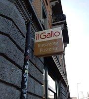 Ristorante Pizzeria il Gallo