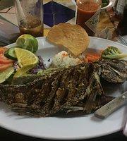 Marlin de Tepic Nuevo Vallarta