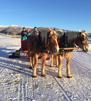 Dinner Sleigh Rides at Haymaker