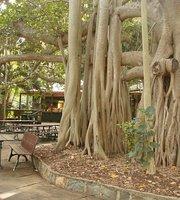 Gardens Tearooms