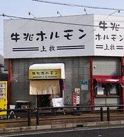 Gyuuchou Variety meat (Horumonyaki)
