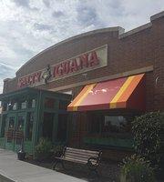 Salty Iguana Mexican Restaurant