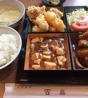 Pekin cuisine Hyakuraku Tennoji