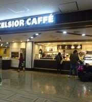 Excelsior Caffe Narita Airport Dai2 Terminal Bldg