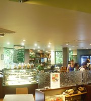 Skyrail Canopy Cafe