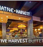 Native Harvest Buffet