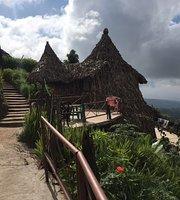Mount Kilimanjaro View Lodge