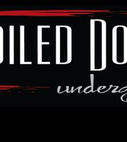 The Soiled Dove Underground