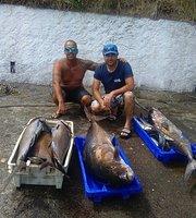 Bateaux de pêche et sessions au large
