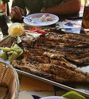 El Marlin de Tepic