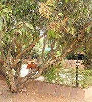 Mango Moods Family Garden Restaurant