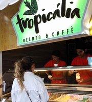 Tropicalia Gelato e Caffe