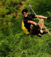叢林飛行和空中冒險公園