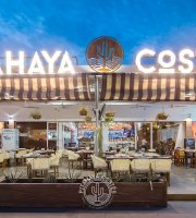 Pitahaya Costes