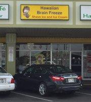 Hawaiian Brain Freeze Shave Ice and Ice cream