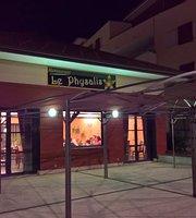 Le Physalis