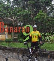 Banaran 9 Coffee & Tea Krumput