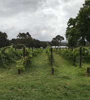 Carlie Green Vineyards