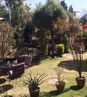 Pauline's Garden