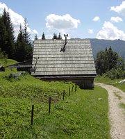 Kosijev dom na Vogarju