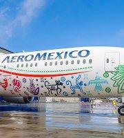 Aeromexico Flights And Reviews With Photos Tripadvisor