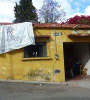 El Pochote Raynon Mercado Organico