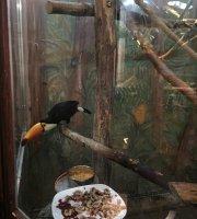 Zoo-Cafe