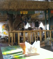 Tree House Ganga Cafe