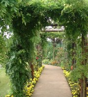 Winthrop Gardens Cafe