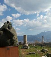 pompeii the best preserved tragedy essay