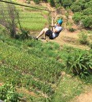 متنزهات المغامرات الهوائية والانزلاق على الحبال