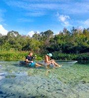 Wycieczki ekologiczne