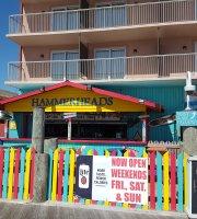 Hammerheads On The Beach