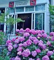 Oikogeniaki Taverna O Platanos