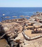 Reef Beach Ristorante