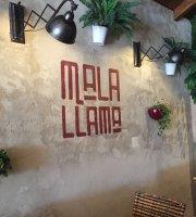 Malallama Soul Food