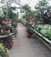 Växthuscafeet