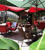Nirvana Coffee at Yogaville