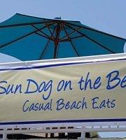 Sun Dog on the Beach