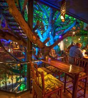 ‪Tree House Restaurante & Cafe‬