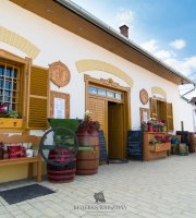 Gal Pince and Wine Museum