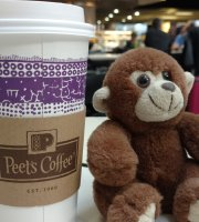 Peet's Coffee & Tea at SFO Airport - 6 Locations