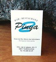 Pinya 2