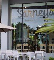 Sarneys