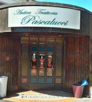 Antica Trattoria Pascalucci